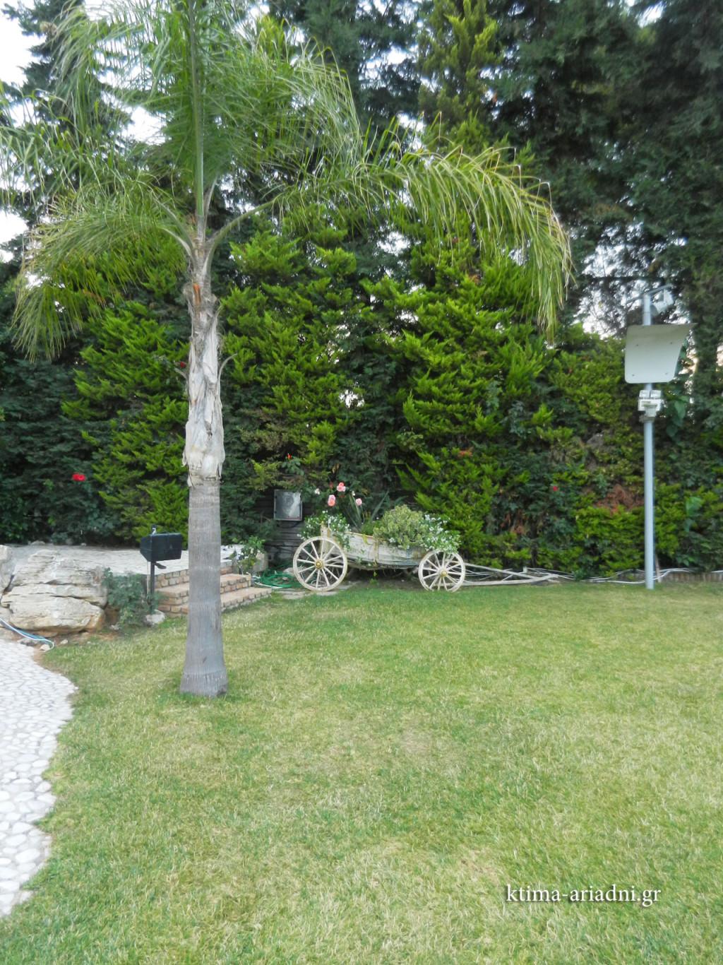 Ένα χαρακτηριστικό σημείο στο κτήμα Αριάδνη, που επιλέγεται από τους φωτογράφους για μερικές από τις γαμήλιες πόζες των ζευγαριών