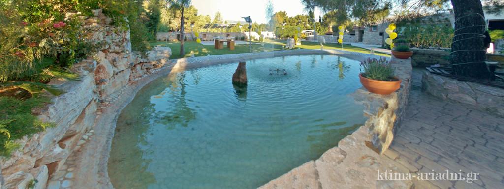 """Η χαρακτηριστική λιμνούλα στο """"Φαιστός"""" του κτήματος Αριάδνη είναι το υγρό στοιχείο που συμβάλει στην καλή αύρα του χώρου"""