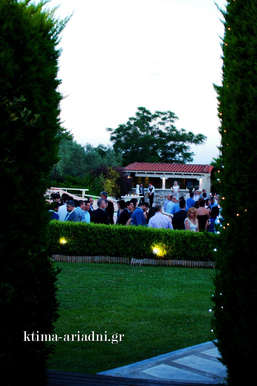 Οι καλεσμένοι πέρασαν στον χώρο της πισίνας για να απολαύσουν το ποτό τους πριν και μετά τον γάμο. Στη συνέχεια μεταφέρθηκαν στο Anais Club για τη γαμήλια δεξίωση