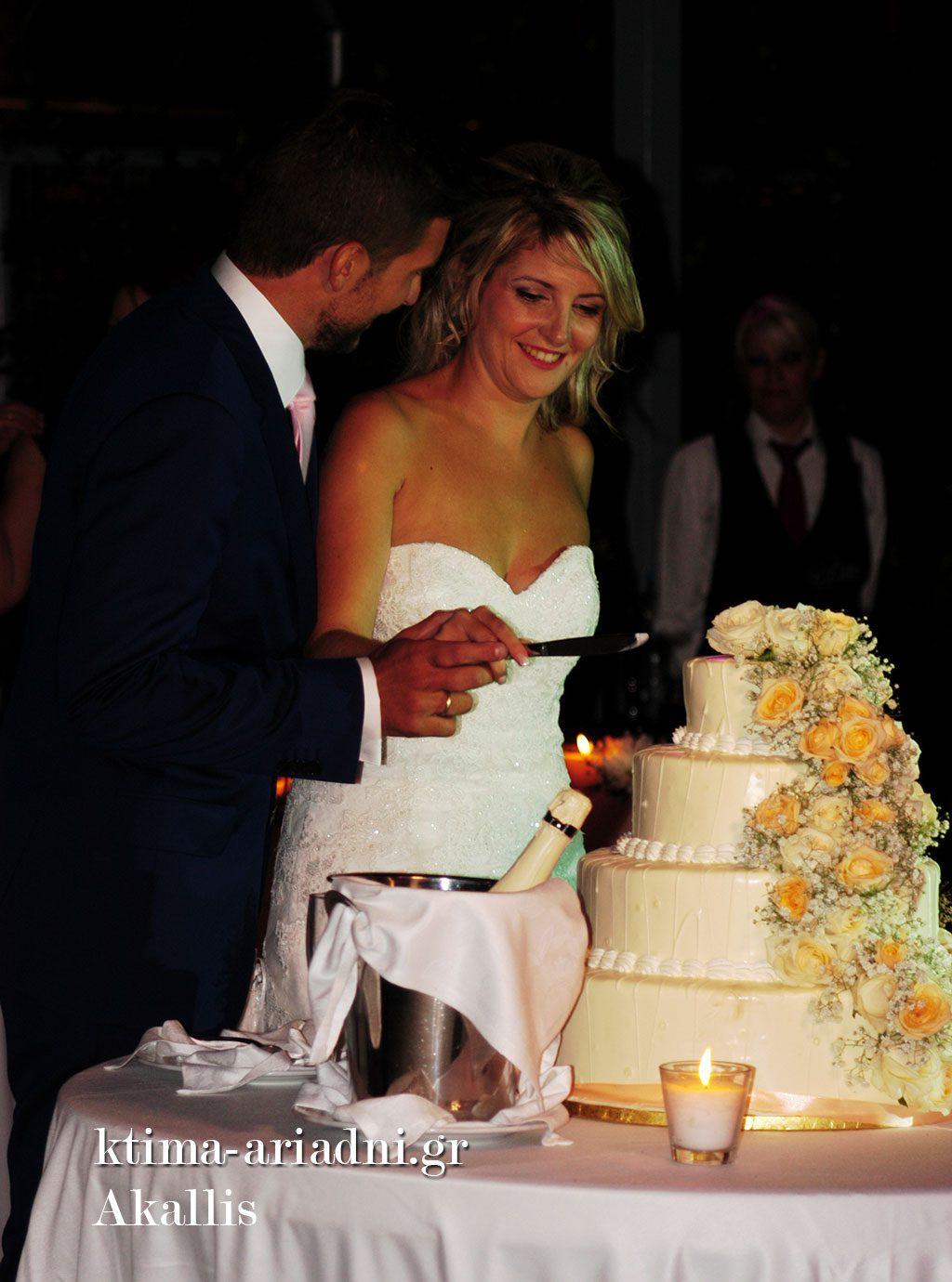 Η νεόνυμφοι κόβουν την τούρτα γάμου