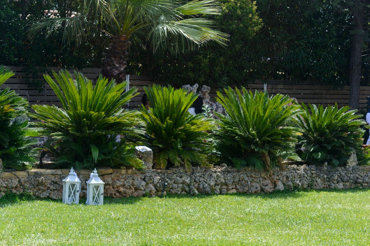 Καταπράσινος κήπος στο κτήμα