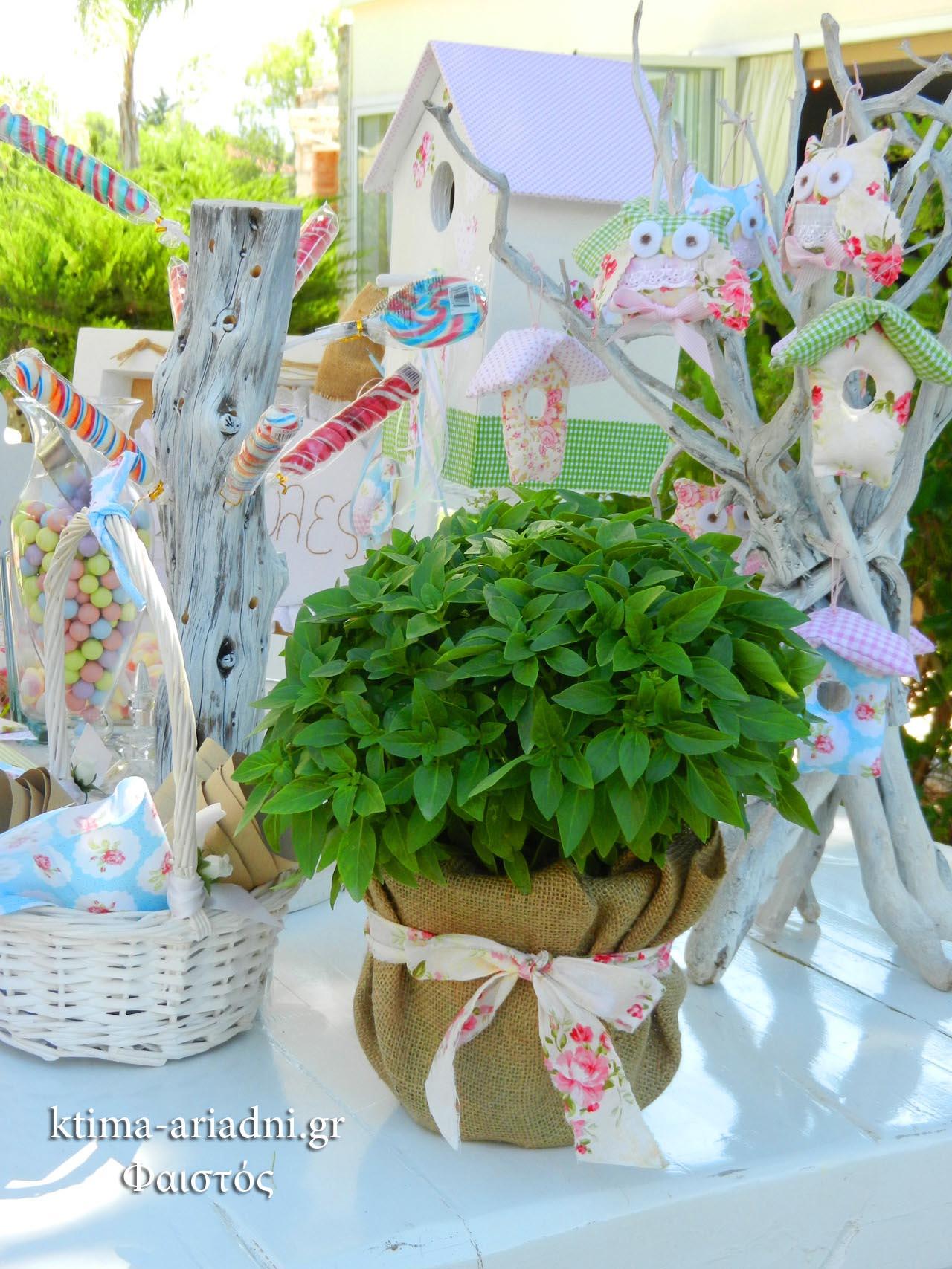 vaptisi-koukouvagia-roz-floral-decor-vasiliko-5018-a